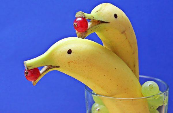バナナイルカ